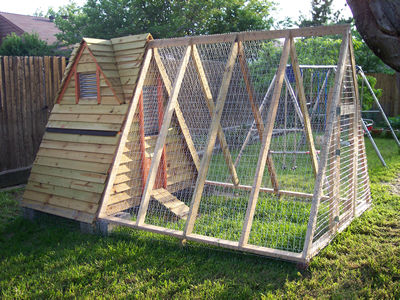 How to Build a Chicken Coop - My Backyard Chicken Farm