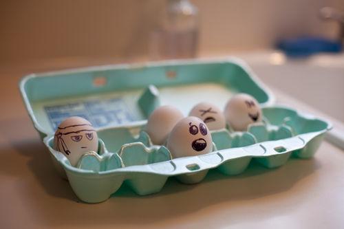 eggsbox